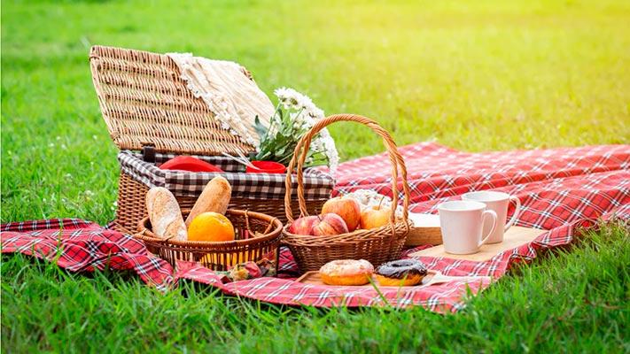 Nos vamos de picnic 06